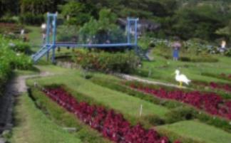 The bridge at Villa Marta is a copy of a well-known Panama suspension bridge.