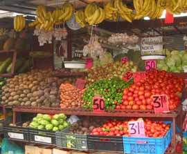 Cost of living in Panama economy helped by street veggies