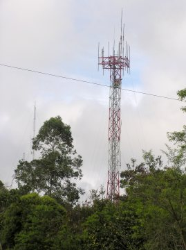 One, of four, recently erected cell-phone towers