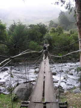 rotting planks on a cable stayed bridge