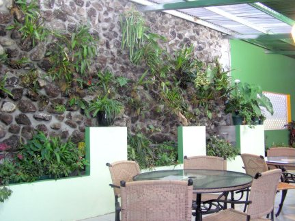restaurant wall with orchids