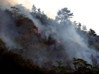 Fire, fanned by strong winds, rushes to the crown of the hill behind David Dell's house.